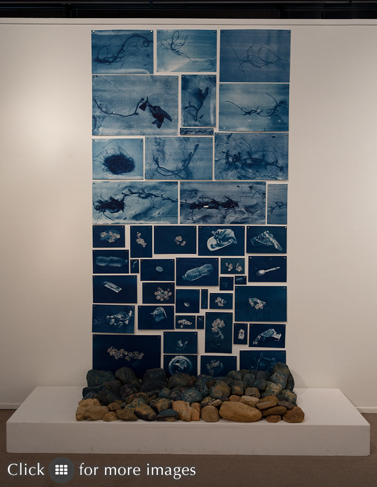 Image of a mixed media sculpture including prints of litter, flora and fauna from a Santa Monica beach. Tidelands, installation at Brea Gallery in Brea, California.